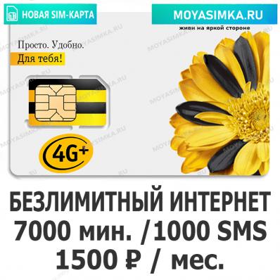 SIM-карта для звонков с Безлимитным интернетом Билайн Успешный 1500