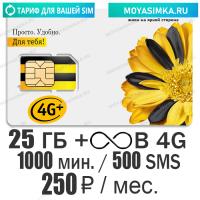 Тариф для звонков с Безлимитным интернетом Билайн Ключевой 250