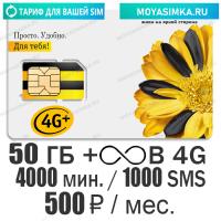 Тариф для звонков с Безлимитным интернетом Билайн Ключевой 500