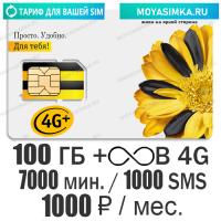 Тариф для звонков с Безлимитным интернетом Билайн Ключевой 1000